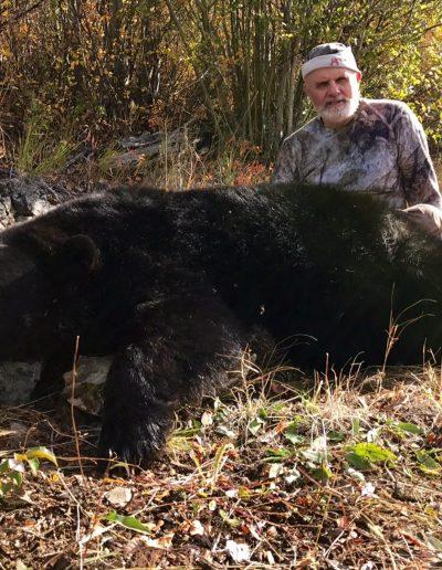 2016 bear2